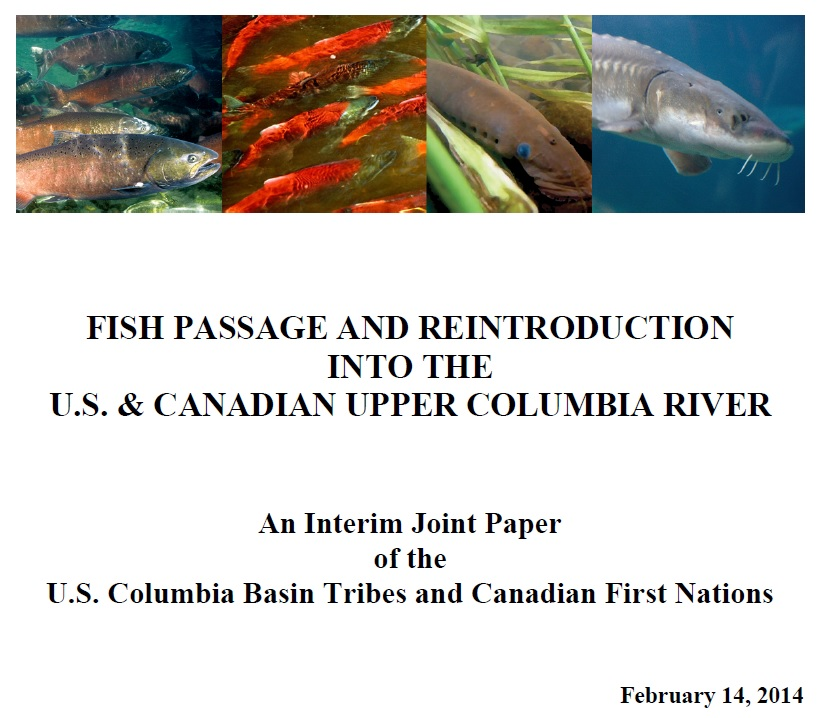 Fish Passage and Reintroduction Proposal Photo